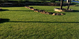 Lawn Care Services From Smart Lawn And Landscape Inc In Lubbock Texas